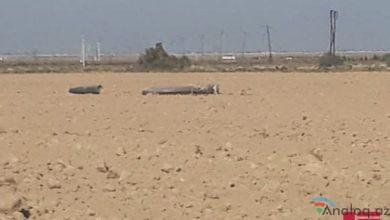 Photo of Ermənistan Silahlı Qüvvələri tərəfindən Xızı rayonuna raket atılıb