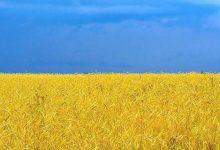 Photo of Ukrayna  bu  əraziləri ələ keçirdi!